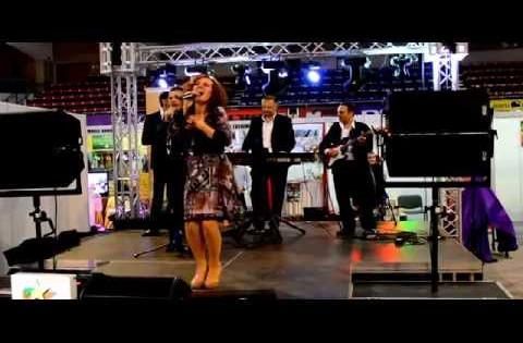 ADINA DRAGOESCU - CONCERT TOPMARIAGE 2014 - BOSQUITO (COVER) - FORMATIA MAGIC BAND